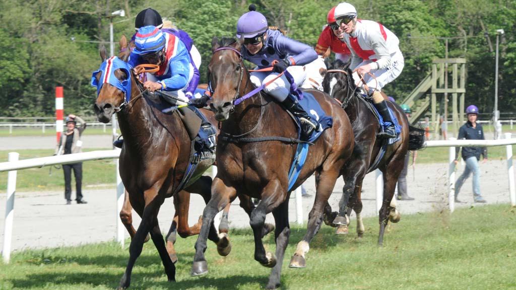 Horse Racing - 475777