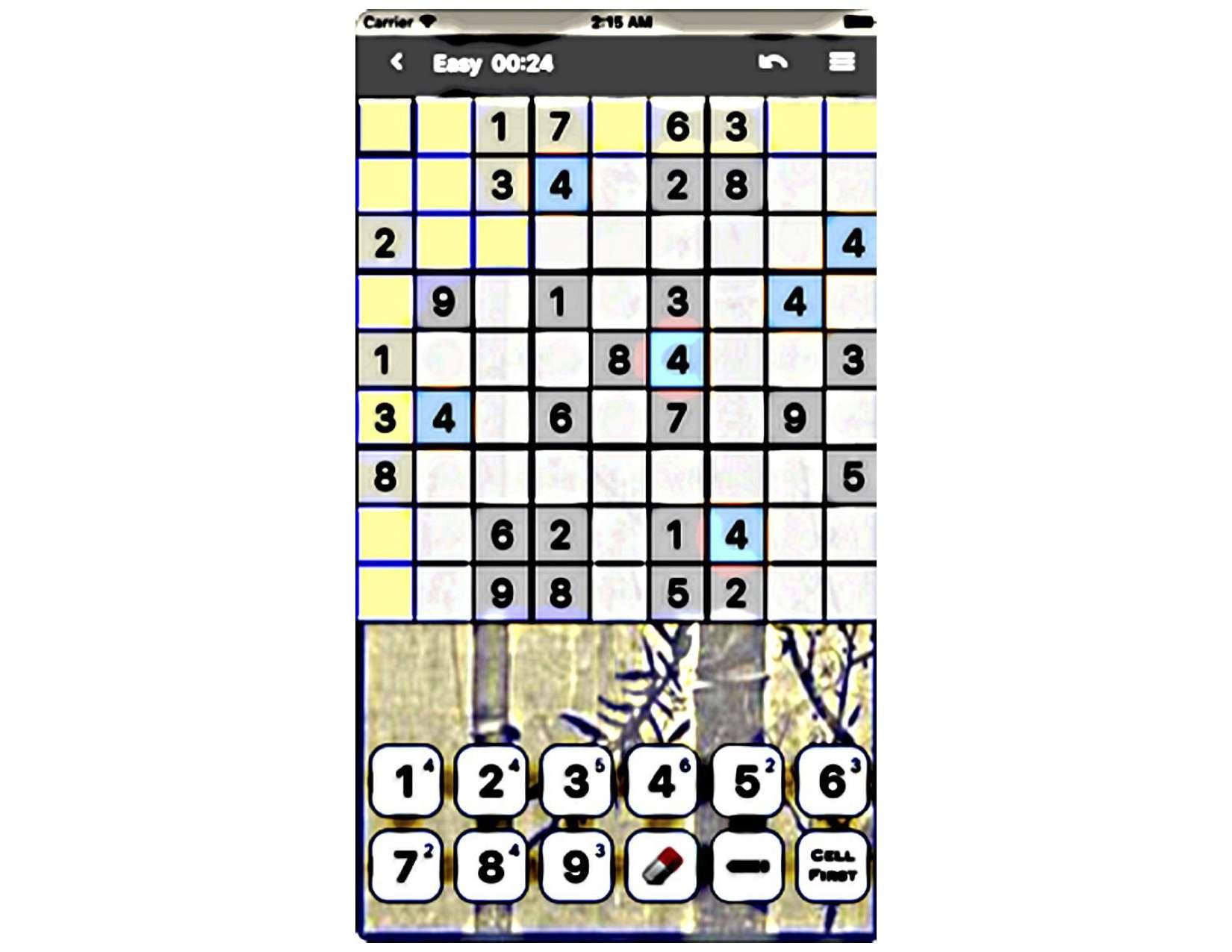 Wimbledon Favourites Sudoku - 813976