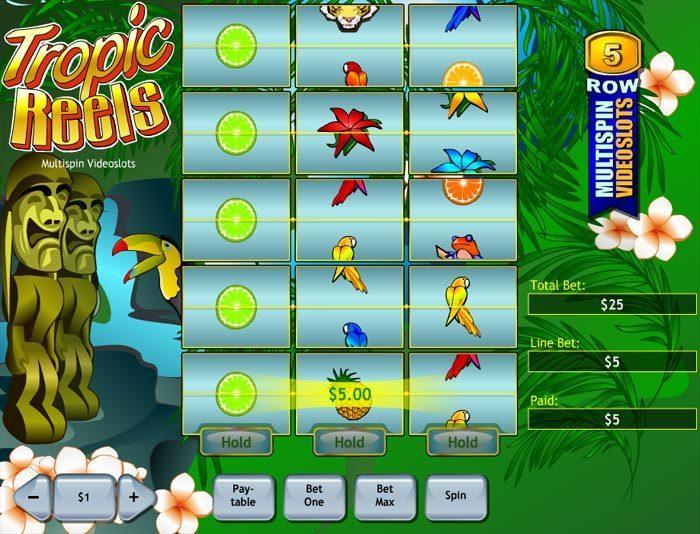 Tropic Reels Slot - 675677