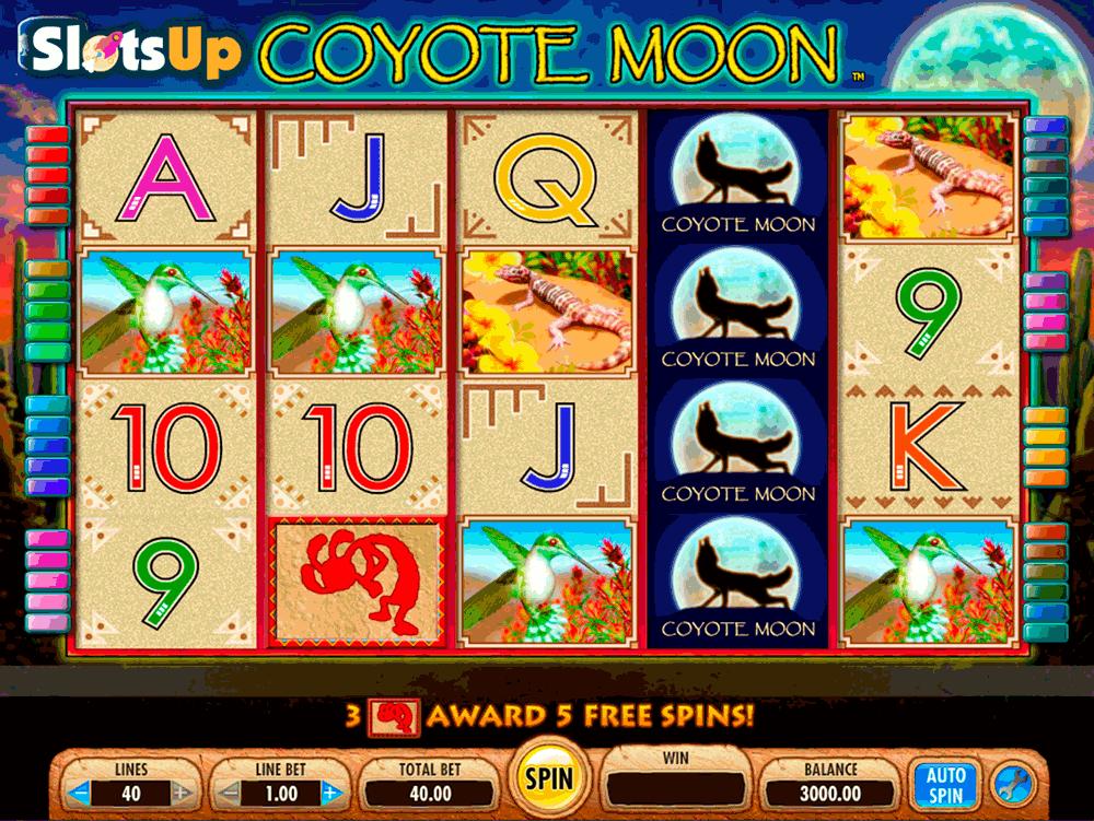 Slot Machine Chat - 599492