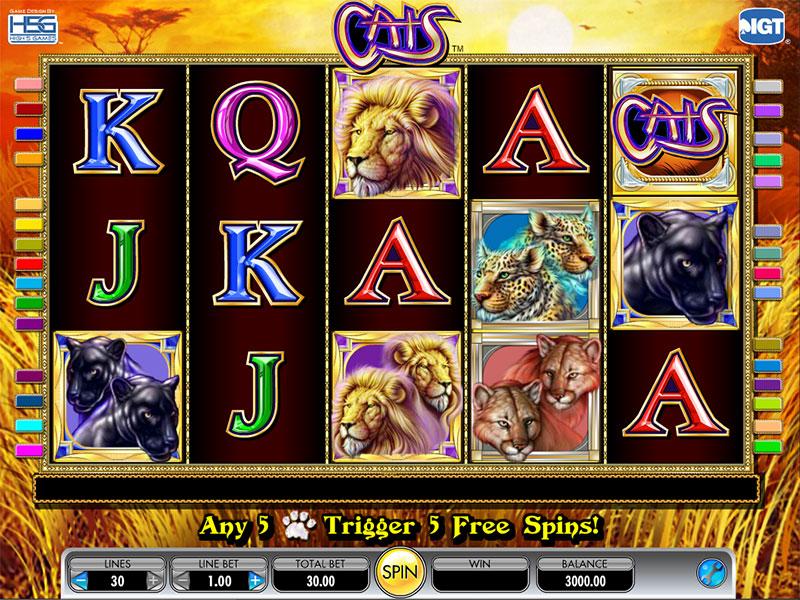 Casino in Canada - 119260