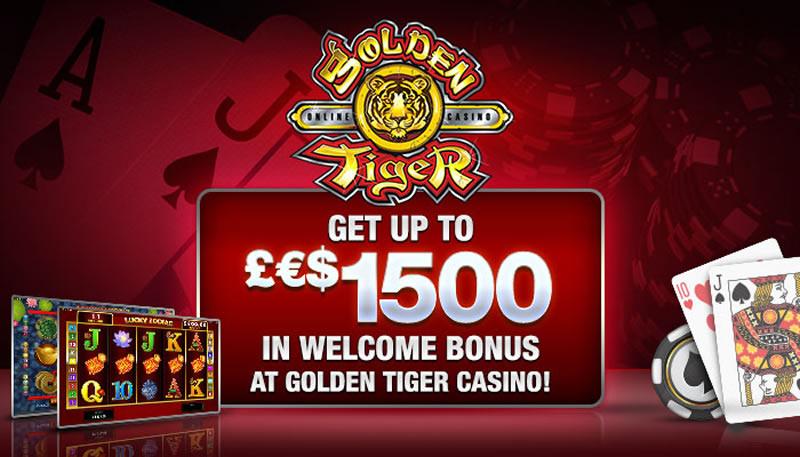 Casino 1000 - 545464