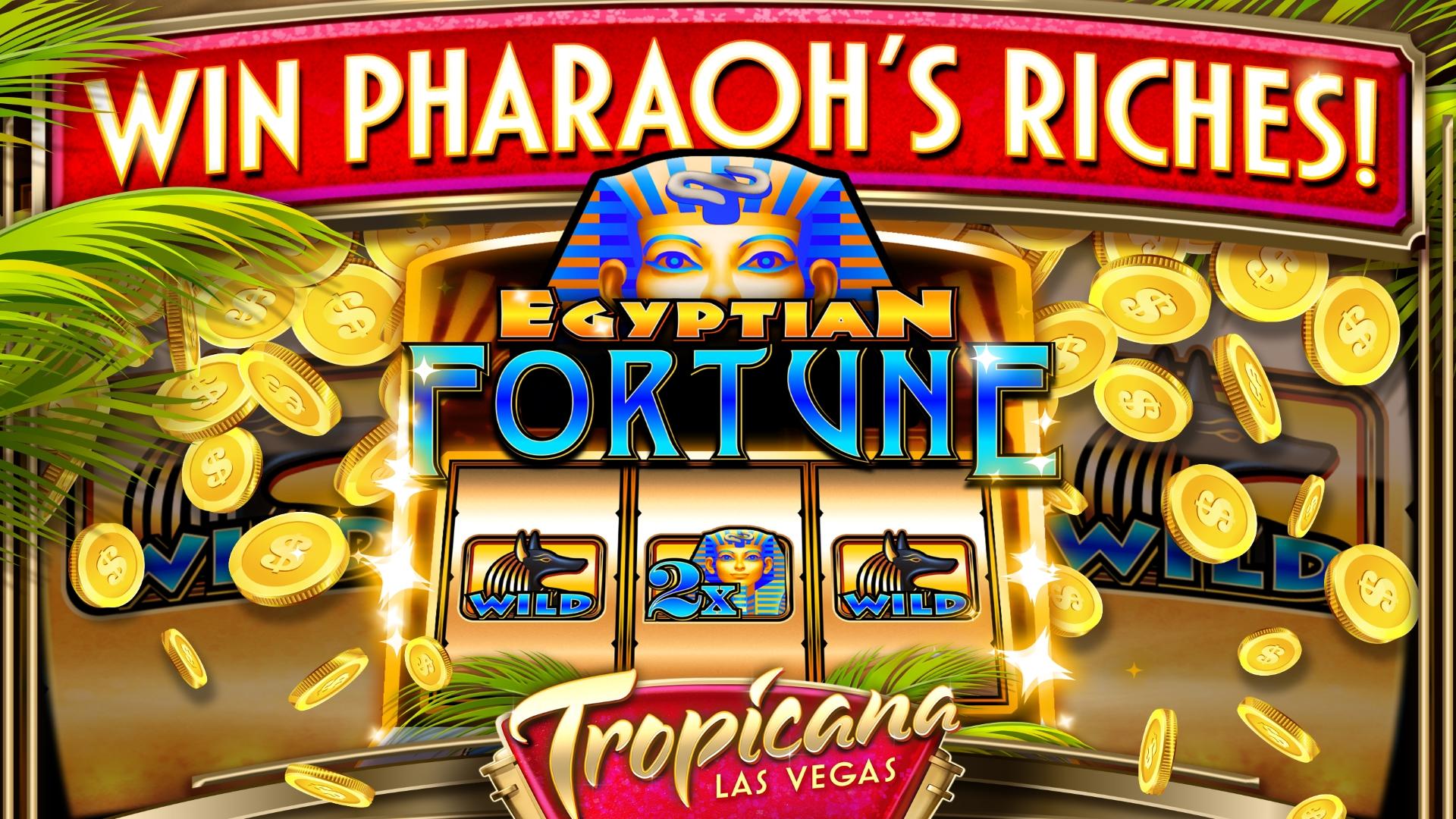 Casino Win - 693285