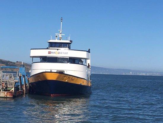 Line Ferry Casino - 472363