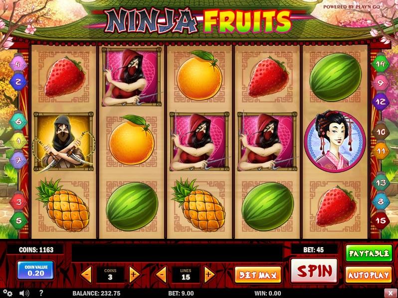 Ninja Fruits Slot - 825864