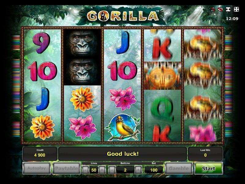 Slot Machine Generator - 937982